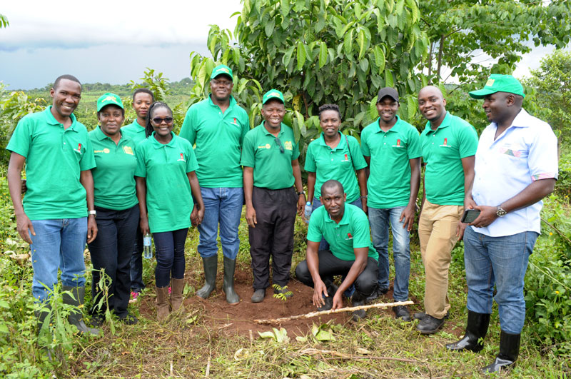 UBL plants Trees in Butambala